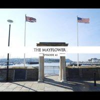 Rodowód 41 | Mayflower